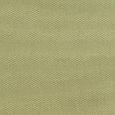 Lettuce Drapery and Upholstery Fabric by Duralee