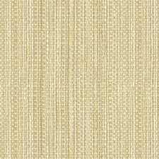 Snow Stripes Drapery and Upholstery Fabric by Kravet