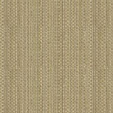 Dime Stripes Drapery and Upholstery Fabric by Kravet