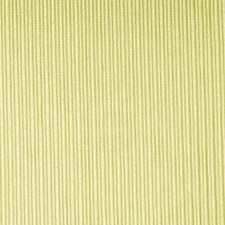 Celery Drapery and Upholstery Fabric by Duralee