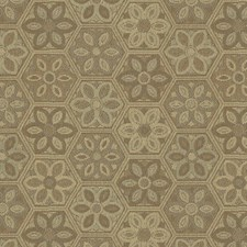 Sandstone Botanical Drapery and Upholstery Fabric by Kravet