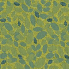 Mojito Botanical Drapery and Upholstery Fabric by Kravet