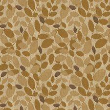 Honey Botanical Drapery and Upholstery Fabric by Kravet