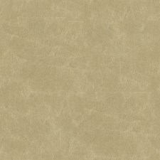 Chardonnay Solid W Drapery and Upholstery Fabric by Kravet
