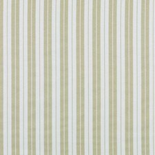 Peridot Stripe Drapery and Upholstery Fabric by Duralee