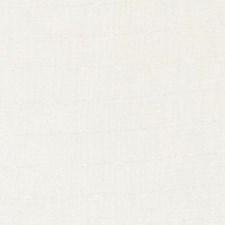 327165 51398 86 Oyster by Robert Allen