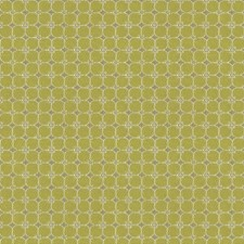 Pear Botanical Drapery and Upholstery Fabric by Kravet