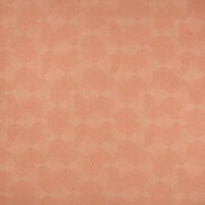 Coral Modern Drapery and Upholstery Fabric by Kravet