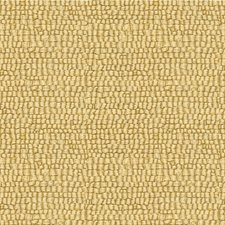 Champagne Texture Drapery and Upholstery Fabric by Kravet
