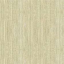 Aurora Solids Drapery and Upholstery Fabric by Kravet