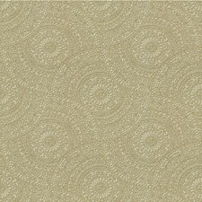 Thyme Medallion Drapery and Upholstery Fabric by Kravet