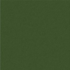 Green/Sage/Olive Green Texture Drapery and Upholstery Fabric by Kravet