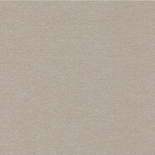 Light Grey/Beige Solids Drapery and Upholstery Fabric by Kravet