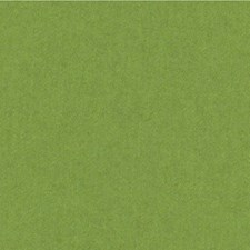 Sprout Solids Drapery and Upholstery Fabric by Kravet