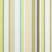 Celery Stripes Drapery and Upholstery Fabric by Kravet