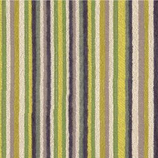 Verbena Stripes Drapery and Upholstery Fabric by Kravet