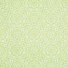 Celery/Beige Ethnic Drapery and Upholstery Fabric by Kravet