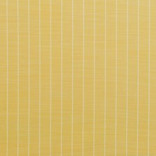 Yellow Drapery and Upholstery Fabric by Clarence House