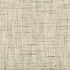 Light Grey/Ivory/Khaki Solids Drapery and Upholstery Fabric by Kravet