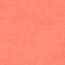 Persimmon Solids Drapery and Upholstery Fabric by Kravet