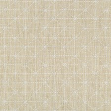 Papyrus Geometric Drapery and Upholstery Fabric by Kravet