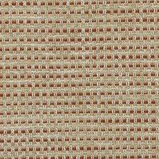 359110 DW61173 219 Cinnamon by Robert Allen