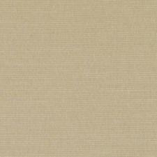 360520 DK61161 152 Wheat by Robert Allen