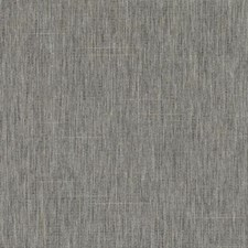 361571 DK61161 79 Charcoal by Robert Allen