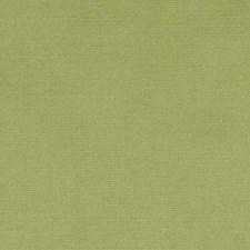 367359 DK61423 321 Pine by Robert Allen