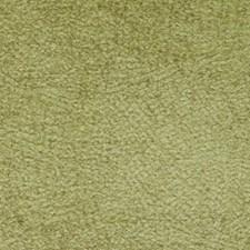367426 71069 25 Chartreuse by Robert Allen