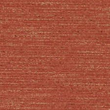369652 DK61275 33 Persimmon by Robert Allen