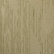 371580 90880 564 Bamboo by Robert Allen