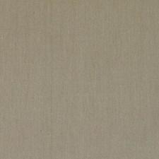 375001 DK61567 318 Bark by Robert Allen