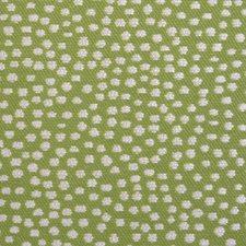 376091 15462 257 Moss by Robert Allen