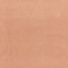 Tan Drapery and Upholstery Fabric by Schumacher