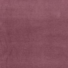 Amethyst Drapery and Upholstery Fabric by Schumacher