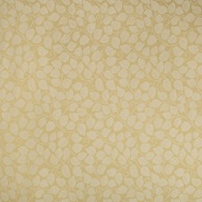 Butterscotch Botanical Drapery and Upholstery Fabric by Kravet