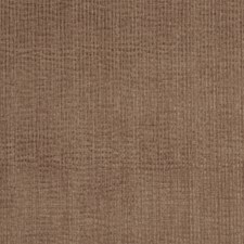 Otter Texture Plain Drapery and Upholstery Fabric by Trend