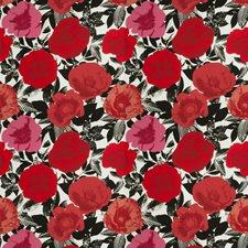 Poppy Novelty Drapery and Upholstery Fabric by Fabricut