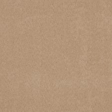 Buckskin Solid Drapery and Upholstery Fabric by Trend