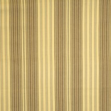 Heliodor Stripes Drapery and Upholstery Fabric by Vervain