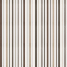 Silver Stripes Drapery and Upholstery Fabric by Trend