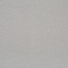 509873 DU16257 15 Grey by Robert Allen