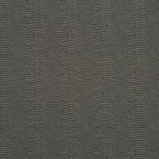 509887 DU16263 79 Charcoal by Robert Allen
