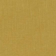 511540 DN16332 6 Gold by Robert Allen