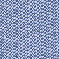 513554 DP42643 99 Blueberry by Robert Allen
