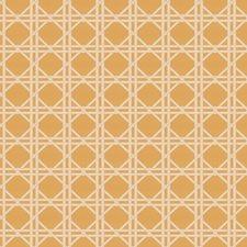 Mimosa Asian Drapery and Upholstery Fabric by Fabricut