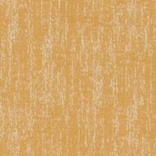 514717 DN16377 632 Sunflower by Robert Allen
