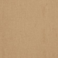 Camel Solid Drapery and Upholstery Fabric by Trend
