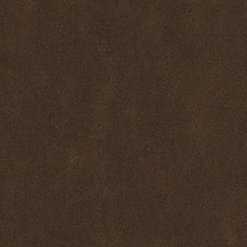518724 DF16289 177 Chestnut by Robert Allen